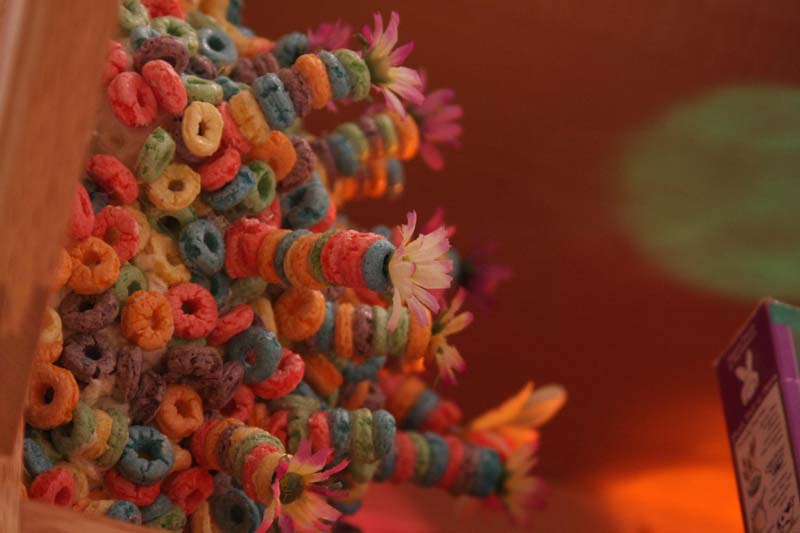 Fruitloop Sculpture New Media Artist John Odonnell